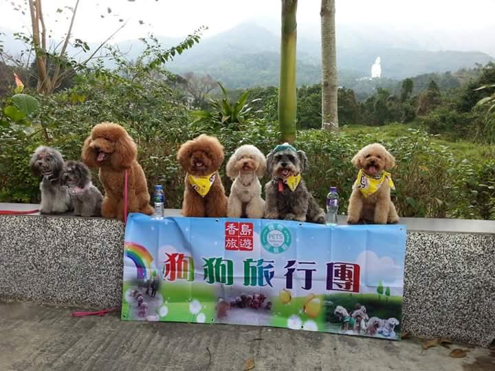 <b>狗狗旅行團--十月一日陸上遊菠蘿園、海上賞煙花一天</b>